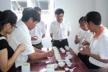 西坪镇的特色铁观音茶文化