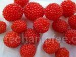 覆盆子 树莓