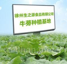 徐州生之源食品有限公司